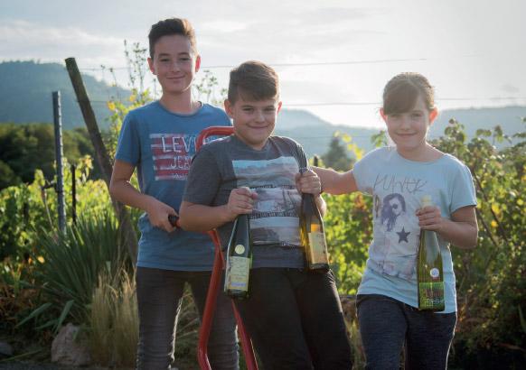 Un domaine viticole familial