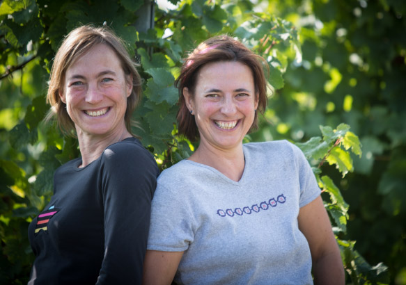 Viticulteurs en Alsace